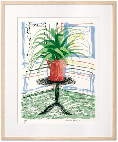 David Hockney, 'David Hockney. A Bigger Book. Art Edition C, No. 501–750', 2016