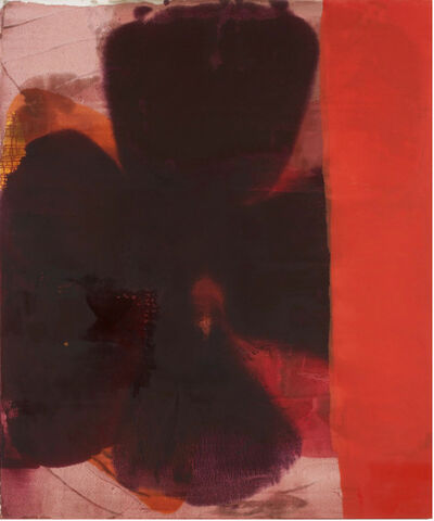 Dirk de Bruycker, 'Red Flash'