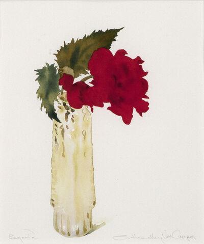 Susan Headley Van Campen, 'Begonia', 2020