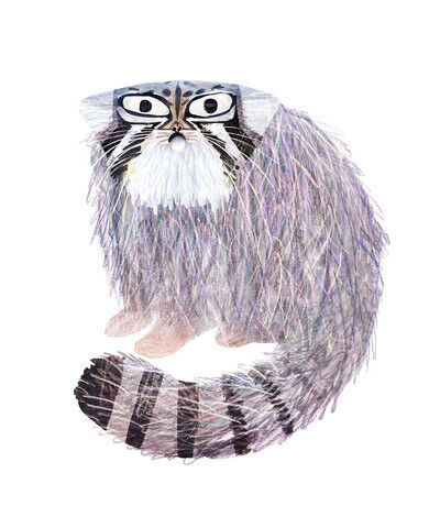 Brendan Wenzel, 'The Pallas Cat'