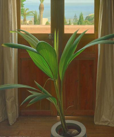 Claudio Bravo, 'Coconut', 2001