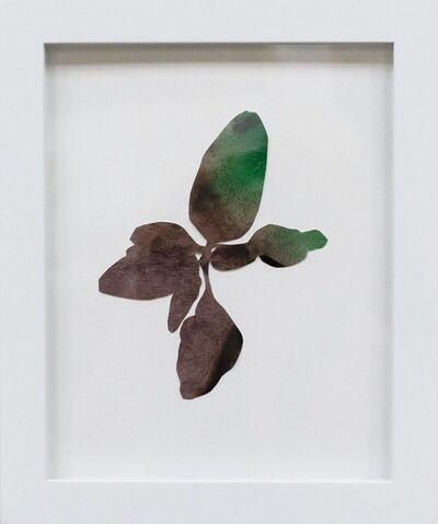 Hannah Cole, 'Little Purple Weed', 2018