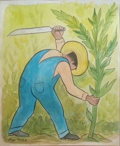 Diego Rivera, 'Cortador de Maíz'