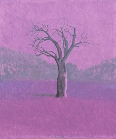 Vonn Cummings Sumner, 'Little Almond Orchard II', 2015