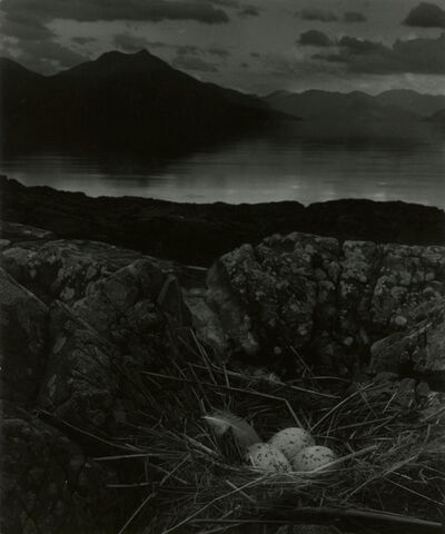 Bill Brandt, 'Gull's Nest, Isle of Skye', 1947