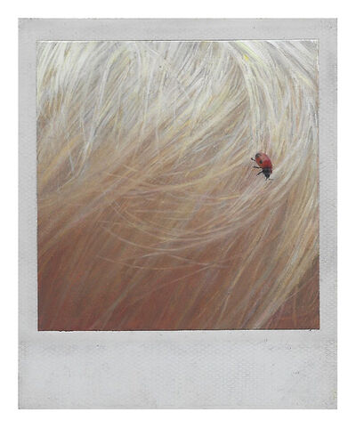 Martí Cormand, 'Ladybug in Linus' hair', 2019