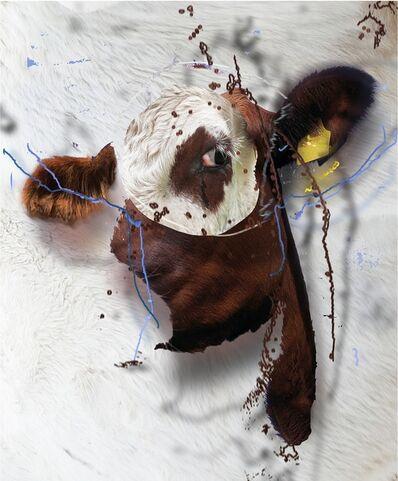 Deborah Oropallo, 'Bull's Eye'