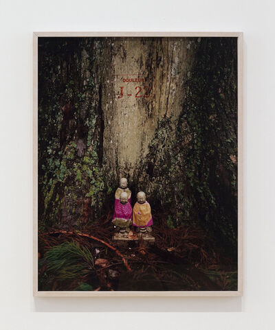 Sophie Calle, 'Exquisite pain, J-22 (Bouddha in front of a tree)', 1984/2003