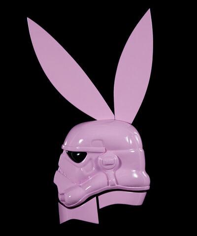 Jason Alper, 'Mr. Pink'
