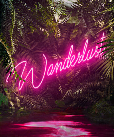 Yee Wong, 'Disco in the Jungle: Wanderlust Pink'