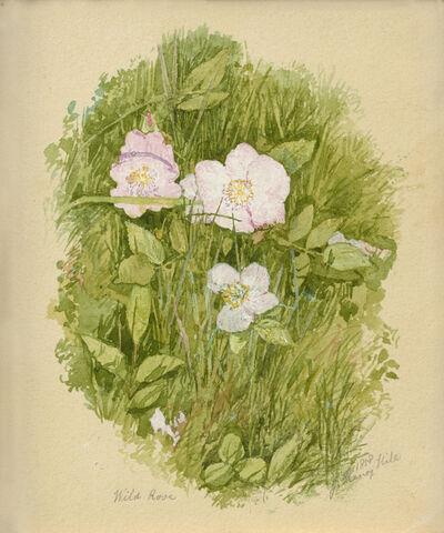 John Henry Hill, 'Wild Roses', 1858