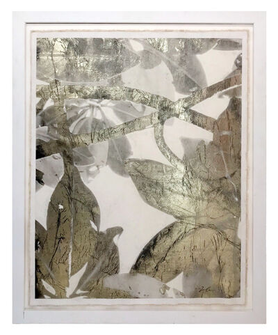 Bill Claps, 'Tropical Thicket', 2014