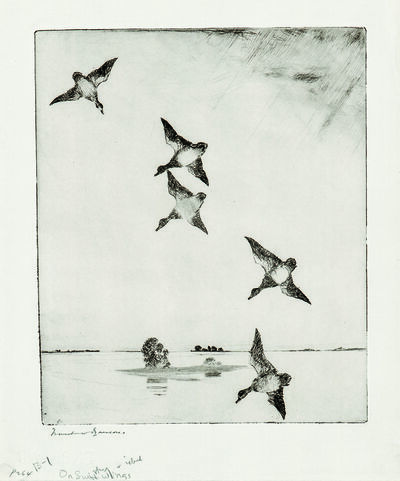 Frank Weston Benson, 'On Swift Wings', 1927