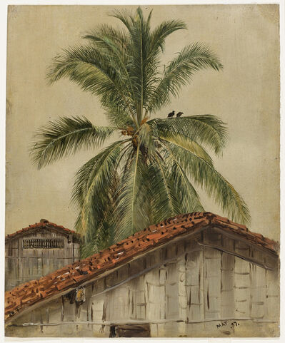 Frederic Edwin Church, 'Palm Trees and Housetops, Ecuador', 1857
