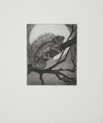 Karin Schaub, 'Chameleon', 1978