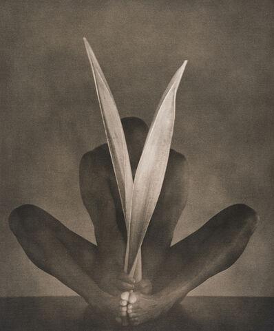 John Casado, 'Untitled 11295', 2001