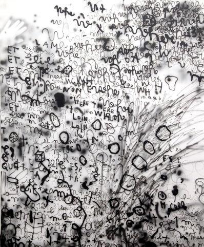 Anne-Lise Coste, 'WHE', 2013