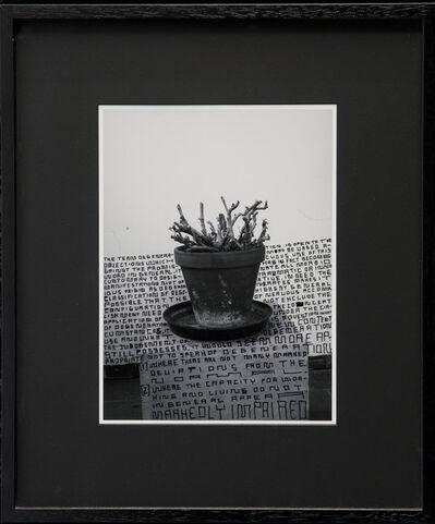 Thomas Zipp, 'A. B.: Degenerate', 2013