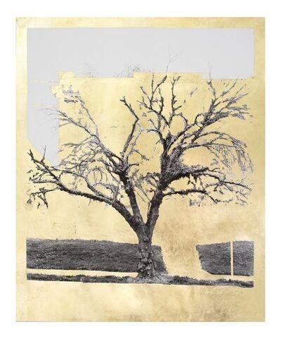 Daniel Ballestros, 'Gold Leaf Tree No. 064', 2018