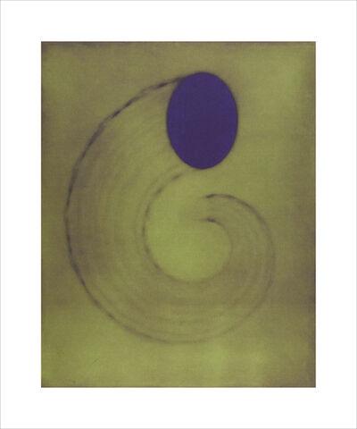 Ted Kincaid, 'Untitled (cornucopia) 25/25', 2001