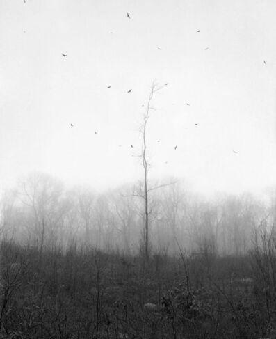 Paul Guilmoth & Dylan Hausthor, 'Ghost Hill ', 2018