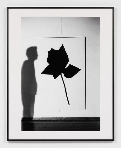 Claudio Abate, 'Jannis Kounellis - Rosa nera', 1966
