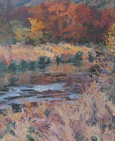 Sheila Gardner, 'Copper Light at Silver Creek'