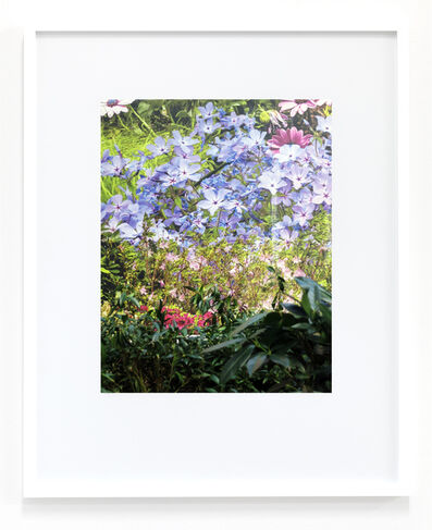 Peter Scott, 'Untitled (Flowers)', 2018