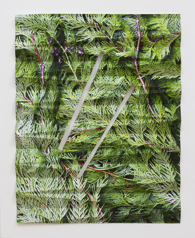 Letha Wilson, 'Evergreen Fold (Two Slots)', 2018