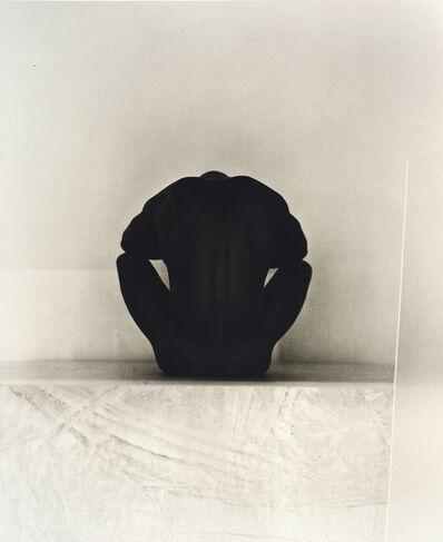 John Casado, 'Untitled 20251', 2001
