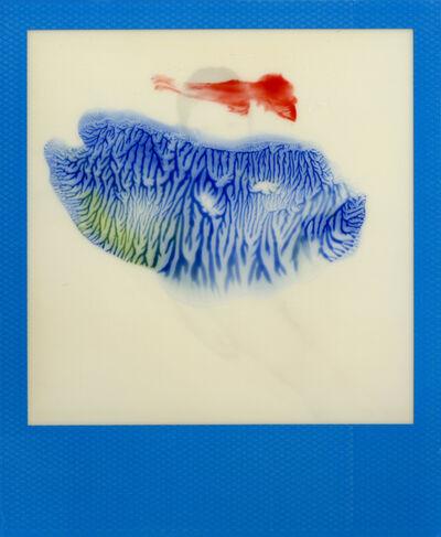 Nobuyoshi Araki, 'untitled', 2005