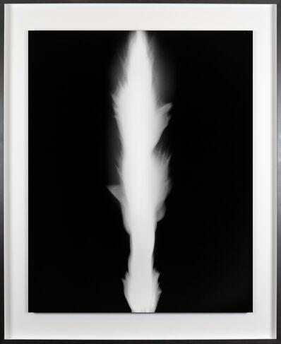 Hiroshi Sugimoto, 'In Praise of Shadows 980728', 1998