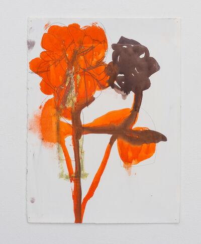 Andrea Rosenberg, 'Untitled 2.15', 2015