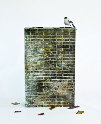 Takeshi Harada, 'Scenery -Long tailed Tit and tile-', 2019