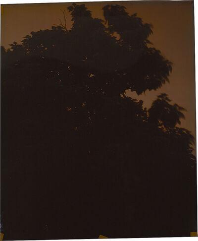 John Chiara, 'Seven Chimneys at Carter', 2014