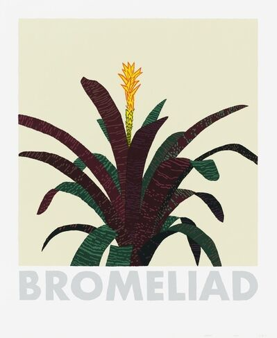 Jonas Wood, 'Bromeliad', 2020
