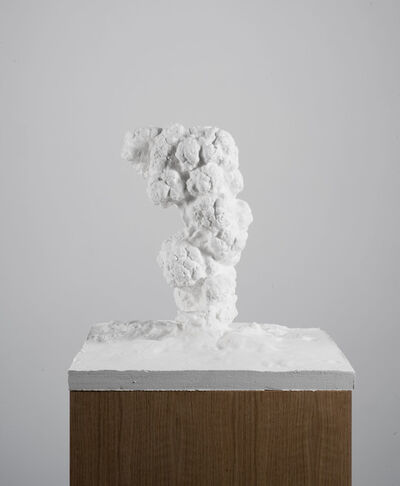 Thu Van Tran, 'Eruption', 2014