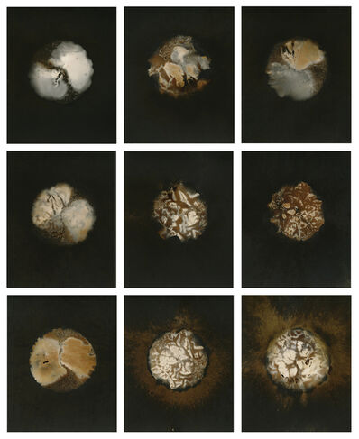 Christopher Colville, 'Variant Grid', 2014