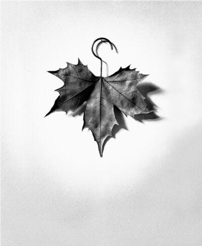 Chema Madoz, 'S/T (Leaf / Hanger), Madrid', 1999