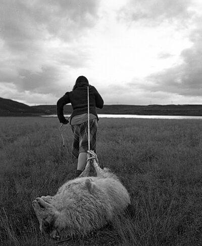 Agnieszka Sosnowska, 'Feeding Ravens, Self Portrait', 2014