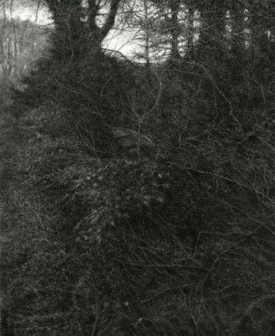 Sue Bryan, 'Woven', 2014