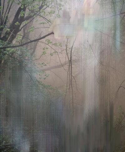 Sandra Kantanen, 'Forest 6', 2018