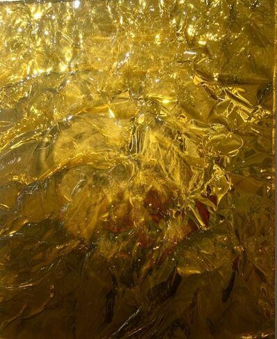 Jason Young, 'Shiny Gold', 2017