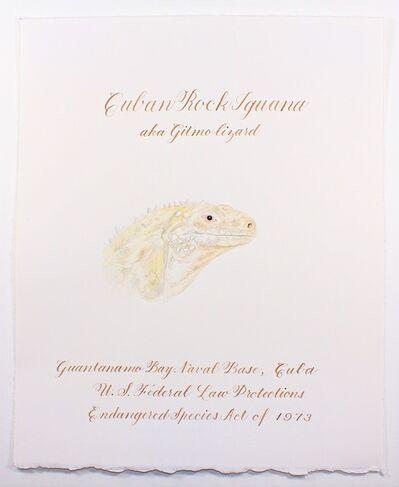 Cynthia Mulcahy, 'Gitmo Lizard (from the War Garden series)', 2018