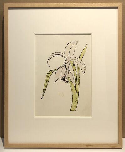 Andy Warhol, 'Still-Life (Flower)', ca. 1957