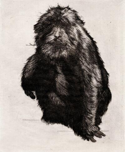 Hugo Wilson, 'Goodbye to Monkeys IV', 2017