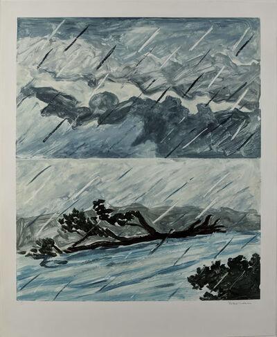 Richard Bosman, 'Storm Flood II (Rain II)', 1987
