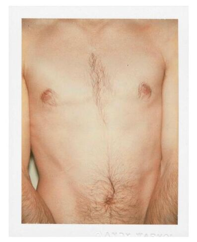 Andy Warhol, 'Polaroids Photograph, Sex Parts: Torso', 1977