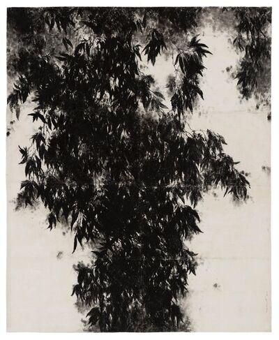 Margarida Lagarto (Portugal, 1954), 'Das Sombras do Verão, do Dia e da Noite', 2017