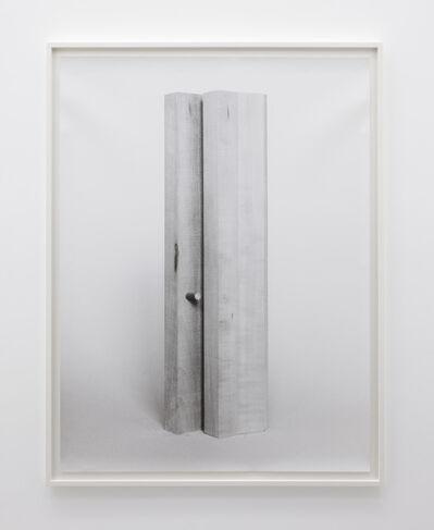 Becky Beasley, 'Extensions (Elaboration No. 2)', 2013